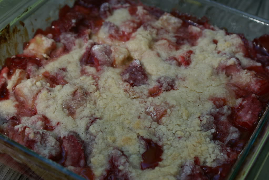 StrawberryRhurbarbMania13 Strawberry Rhubarb Mania