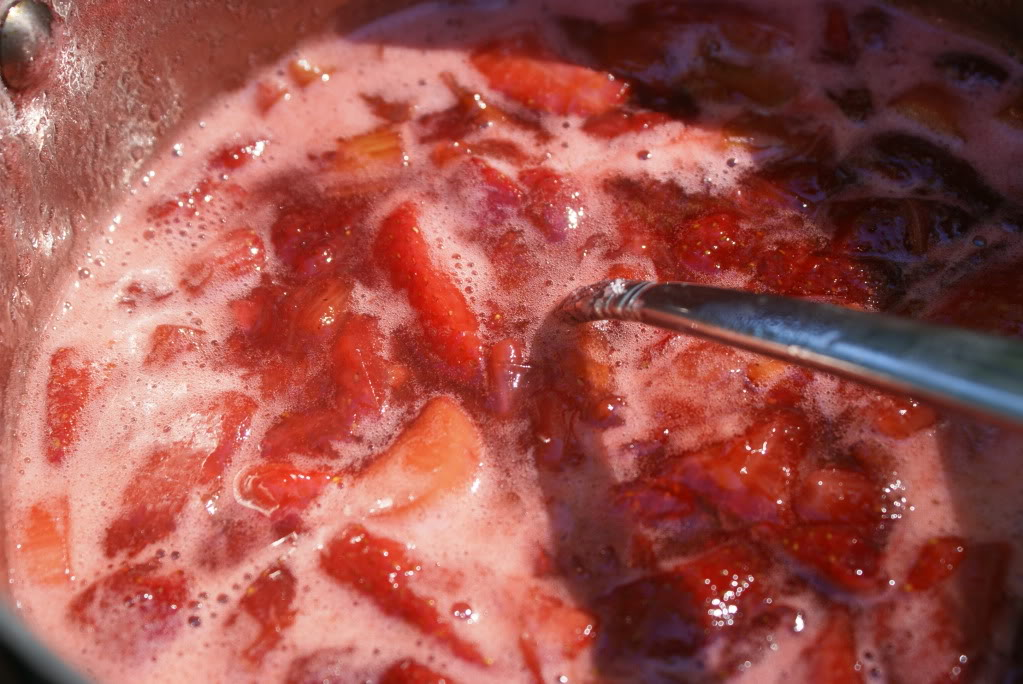 StrawberryRhurbarbMania15 Strawberry Rhubarb Mania