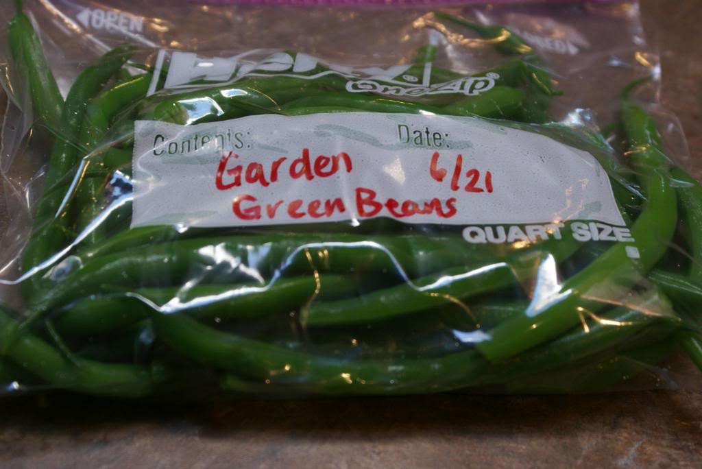 Freezing green beans5
