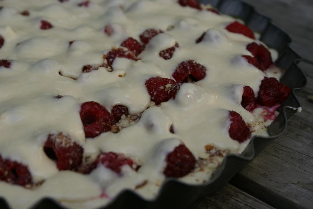 Raspberry Coffee Cake2