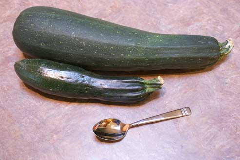 jumbo zucchini How to Use Up Zucchini