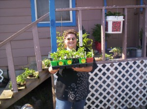 100 6861 300x222 Square Foot Gardening   Featuring Renees Garden