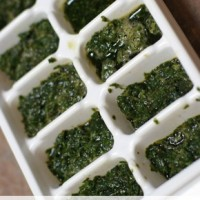 How to Freeze Fresh Herbs | 5DollarDinners.com