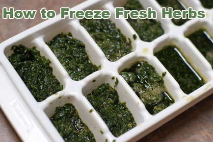 how-to-freeze-fresh-herbs