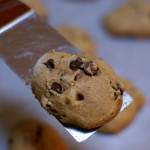 Pumpkin Chocolate Chip Cookies – After School Snack