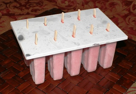 Denise's Fruit Smoothie Popsicles