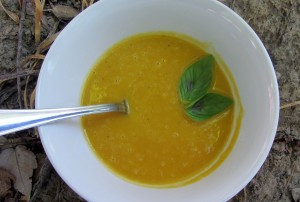 Butternut Soup 300x202 Lindseys Savory Butternut Soup   Food Allergies on a Budget