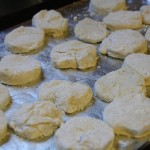 Tricia's Batch Cooking: Biscuits