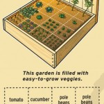 Setting Up a Planter Box – Square Foot Gardening
