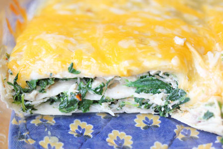 chicken and sour cream ench Spinach and Chicken Layered Enchiladas
