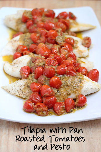 tilapia with pan roasted tomatoes & pesto sauce