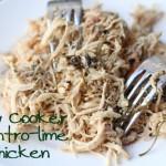 Spicing Up Shredded or Rotisserie Chicken