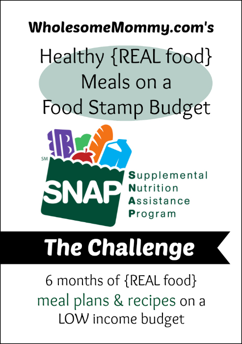 WholesomeMommys Healthy Real Food Meals on a Food Stamp Budget
