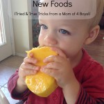 7 Tips for Getting Kids to Try New Foods