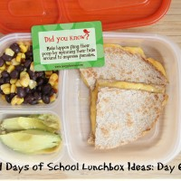 31 Days of School Lunchbox Ideas: Day 6 | 5DollarDinnerscom