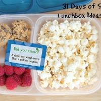 31 Days of School Lunchbox Ideas: Day 7 | 5DollarDinners.com