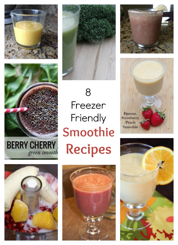 8 Freezer Friendly Smoothie Recipes | 5DollarDinners.com