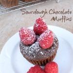 Sourdough Chocolate Muffins   5DollarDinners.com