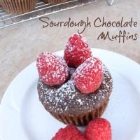Sourdough Chocolate Muffins | 5DollarDinners.com