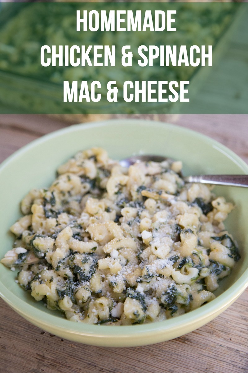 Chicken and Spinach Macaroni n Cheese-3