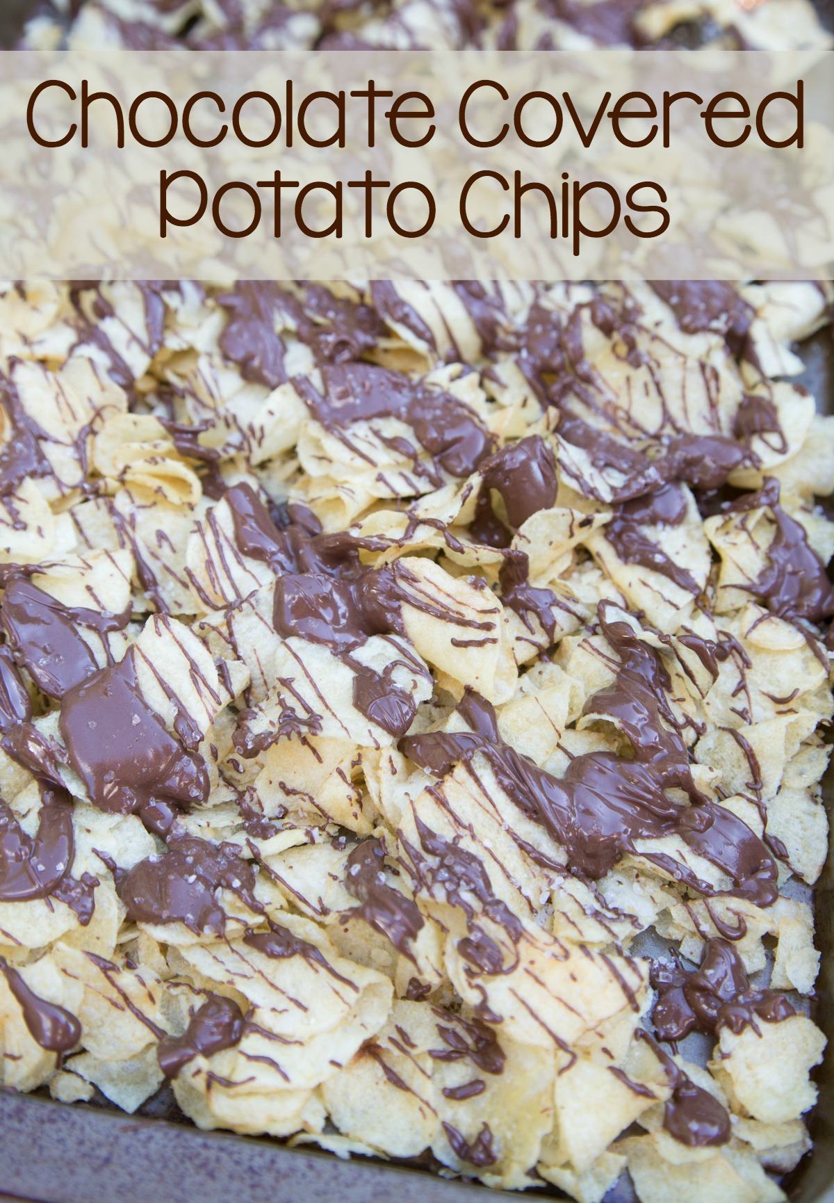 chocolate-covered-potato-chips-on-5dollardinners-com