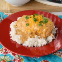 Slow Cooker Creamy Salsa Chicken Recipe from 5DollarDinners.com